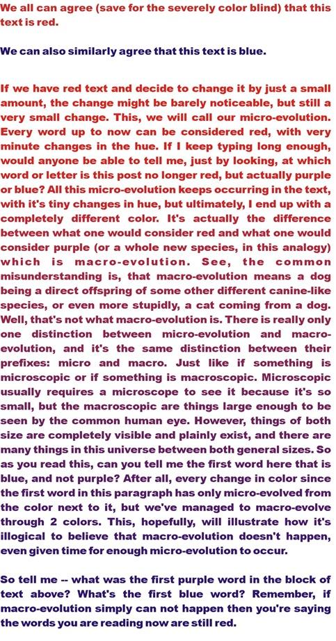 macro vs micro evolution